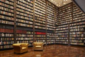 Stony Island Arts Bank Library Bookshelves