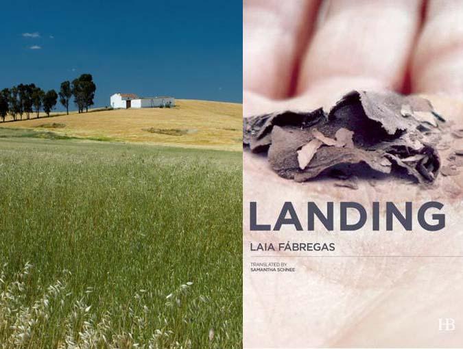 Review | Landing, Laia Fàbregas | Book of the Week