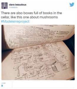 book about mushrooms madeleine project
