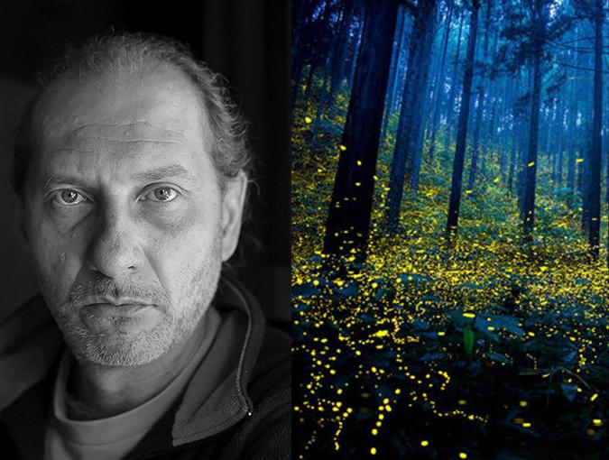 Review | Fireflies, Luis Sagasti | Book of the Week