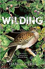 wilding isabelle tree bookblast diary