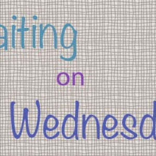 Waiting on Wednesday: A Blind Spot for Boys by Justina Chen