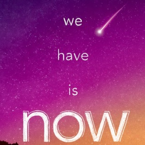 Waiting on Wednesday: All We Have Is Now by Lisa Schroeder