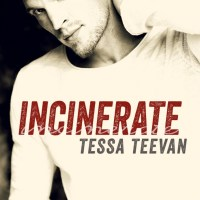 Cover Reveal – Incinerate
