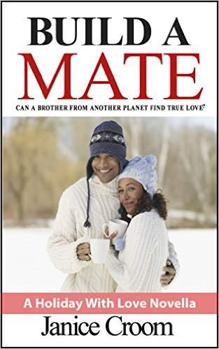 Book Cover: Build a Mate by Janice Croom