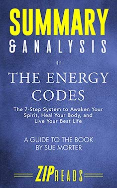 Summary & Analysis of The Energy Code by Sue Morter