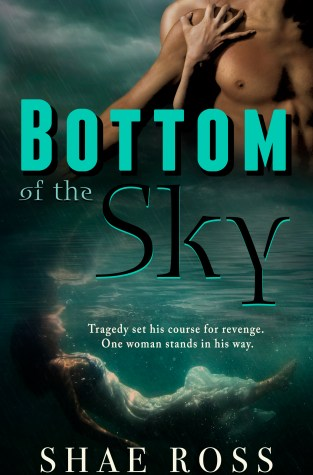 {Blogoversary Author Spotlight+Giveaway} Bottom of the Sky by Shae Ross