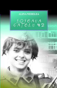 Soseaua Catelu 42