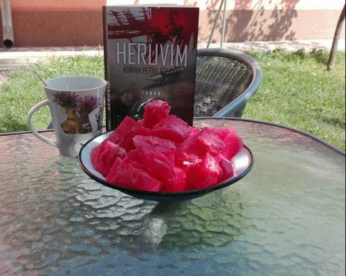 Heruvim, Adrian Petru Stepan – Libris Editorial (Recenzie)