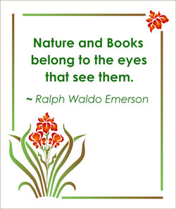 nature-and-books-2