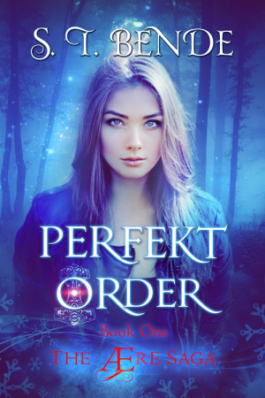 New Release Blitz & Review: Perfekt Order by S.T. Bende