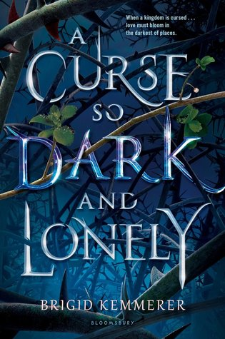Books On Our Radar: A Curse So Dark and Lonely by Brigid Kemmerer