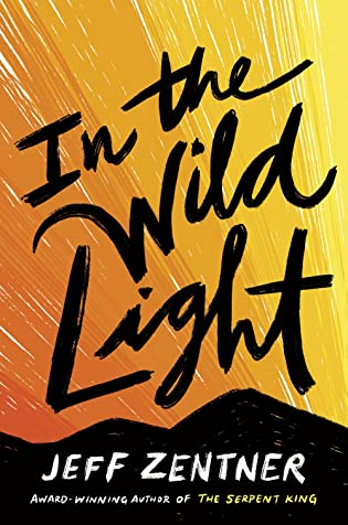 Cover Crush: In the Wild Light by Jeff Zentner