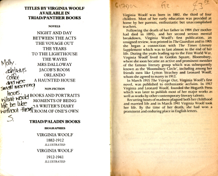 Between the Acts by Virginia Woolf 3