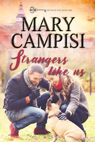 Strangers Like Us (Reunion Gap Book 1)