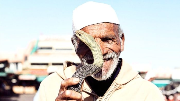 Moroccan man holds snake in front of his face