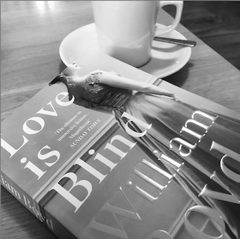 Black and white photograph of the cover of Love is Blind by William Boyd