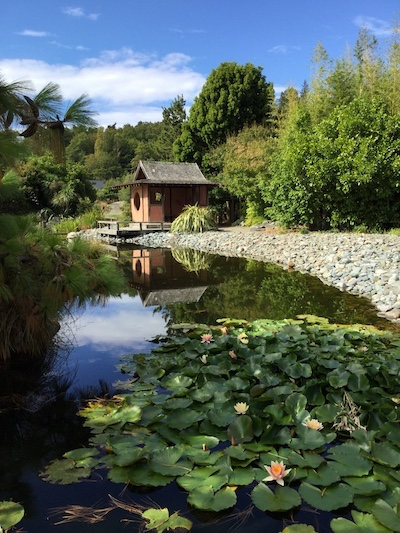 Japanese Gardens at Nelson, South Island, New Zealand: A favourite holiday reading spot: