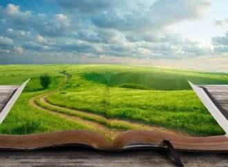 Book Morphs: A Dozen Ways That Books Can Transform