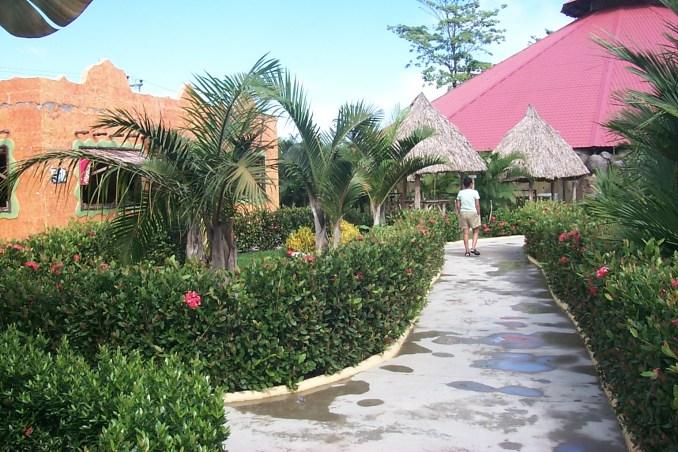 Hotel garden in La Ceiba Honduras