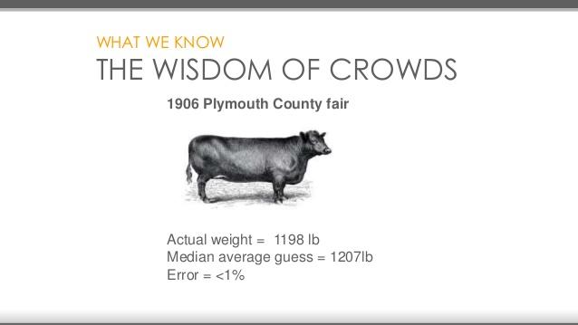 Plymouth county fair