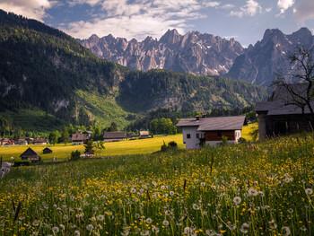 Австрия пока не планирует открывать границы для граждан третьих стран