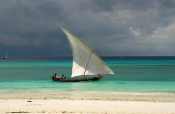 Танзания ужесточила правила въезда: туристам нужны тесты на COVID-19