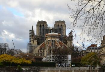 Реставрация собора Парижской Богоматери начнётся зимой