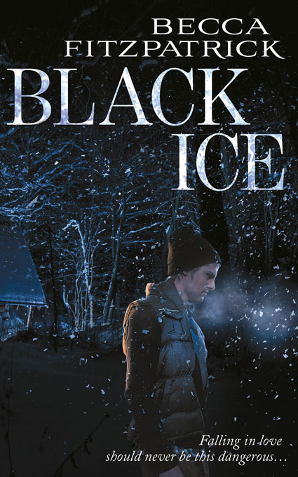 Image result for black ice becca fitzpatrick