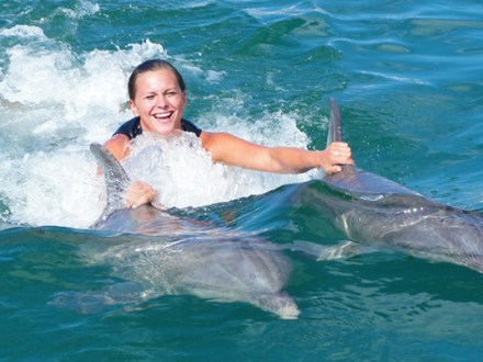 Dunn's River Falls & Dolphin Encounter from Ocho Rios | Book Jamaica Excursions | bookjamaicaexcursions.com | Karandas Tours