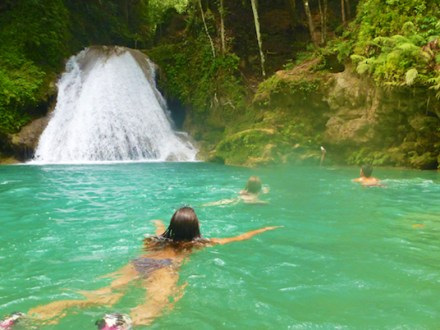 Blue Hole, Secret Falls & Dolphin Swim Adventure | Book Jamaica Excursions | bookjamaicaexcursions.com | Karandas Tours