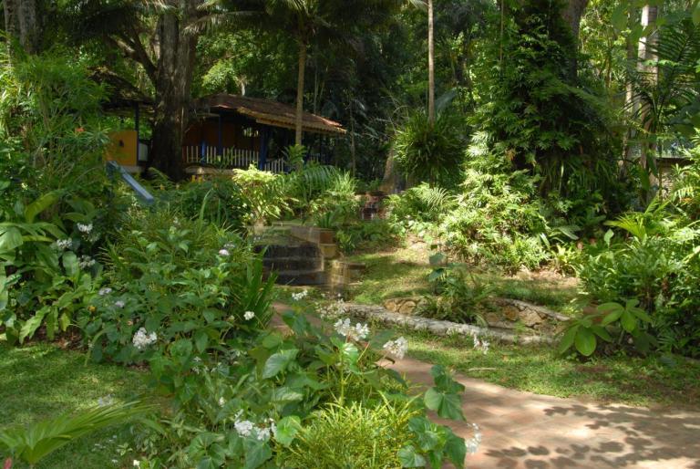 coyaba-gardens-and-dunns-river-falls-ocho-rios-jamaica-3