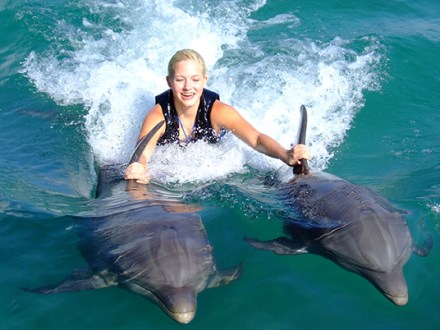 Dolphin Encounter Program Negril | Book Jamaica Excursions | bookjamaicaexcursions.com | Karandas Tours