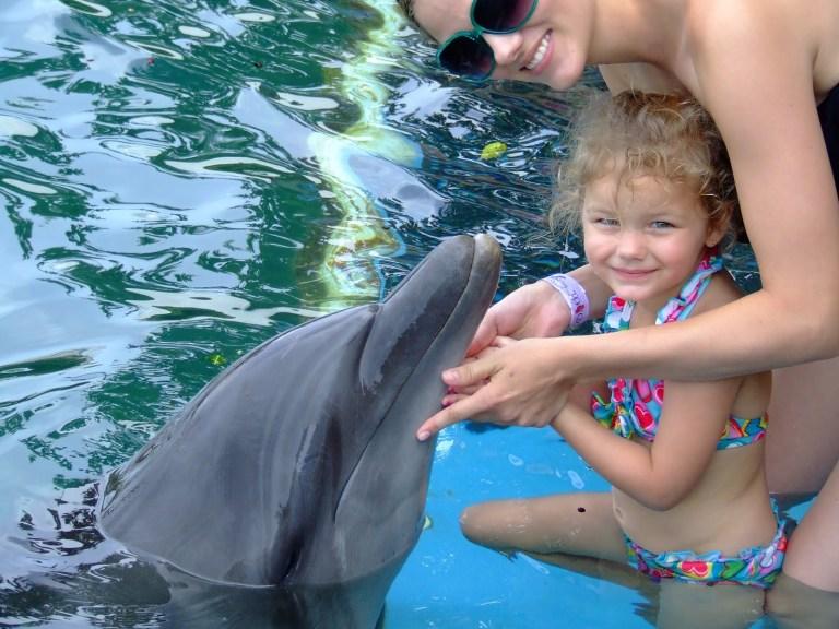 Dunn's River Falls & Dolphin Encounter