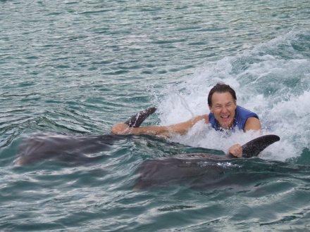 Dolphin Royal Swim   Book Jamaica Excursions   bookjamaicaexcursions.com   Karandas Tours  Book Jamaica Excursions   bookjamaicaexcursions.com   Karandas Tours