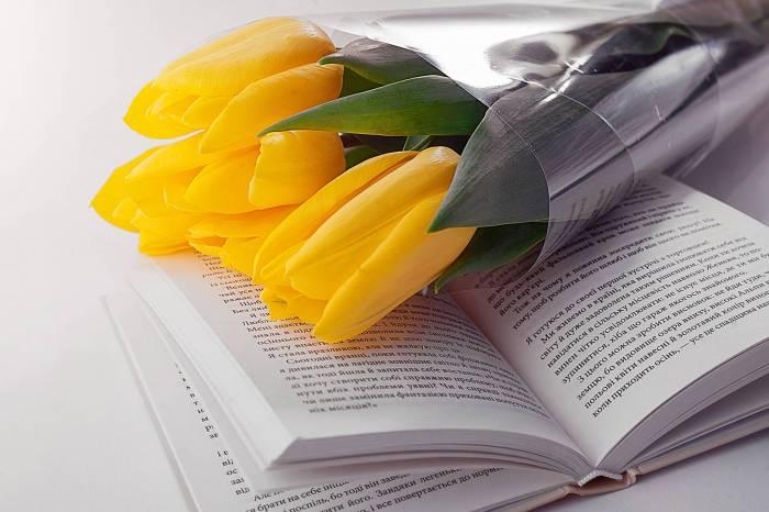 beautiful bloom blossom blur