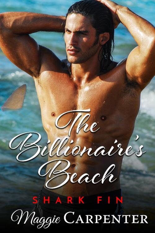 The billionaire's beach: shark fin cover