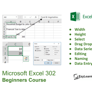 Microsoft Office Excel Beginners Course for dummies - data entry course & resizing spreadsheets - EzyLearn