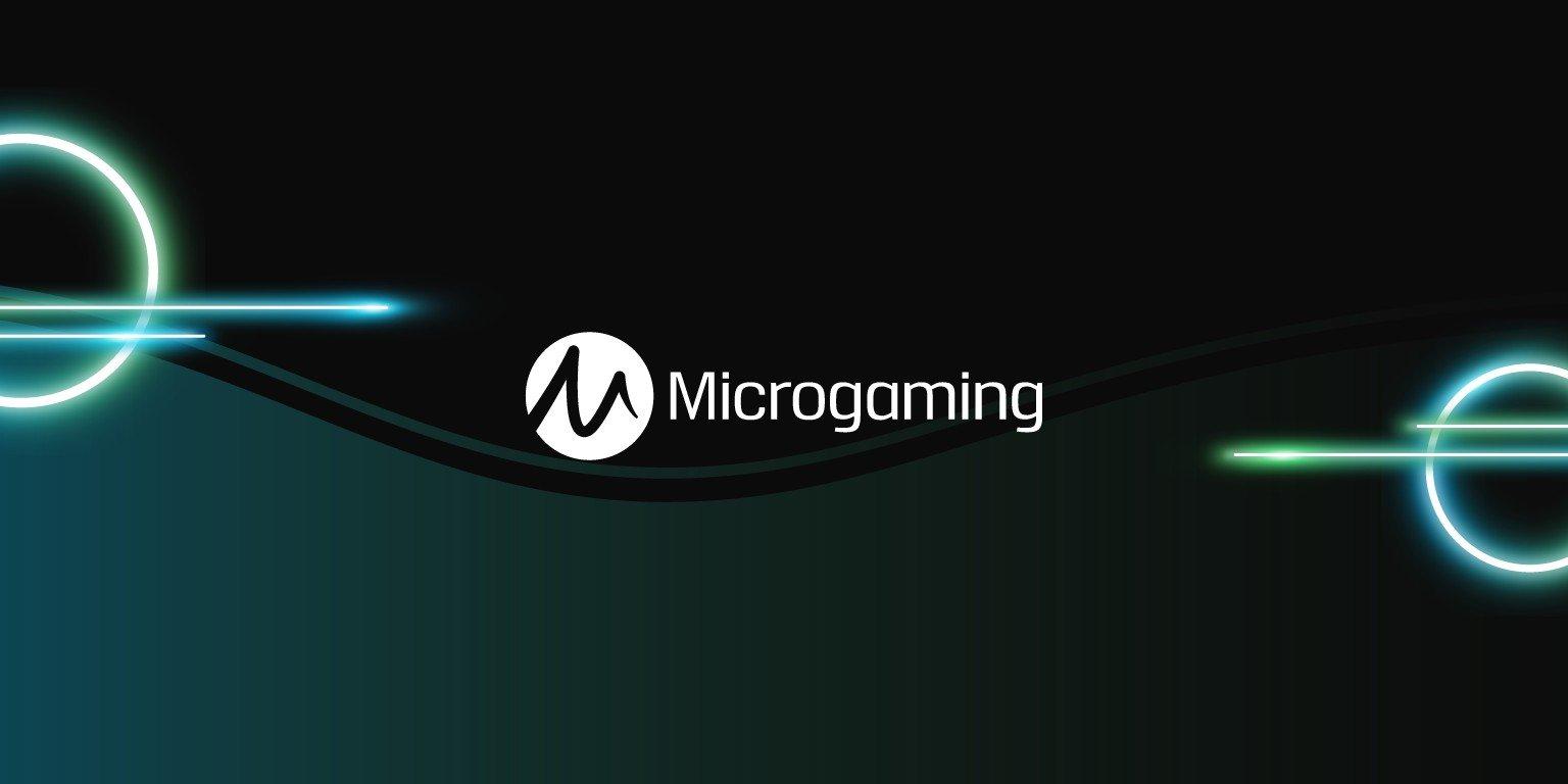 Microgaming одобрил идею реформы игорного законодательства Германии