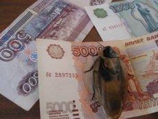 Уфимец организовал тотализатор на тараканьих бегах