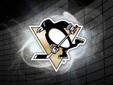 Эмблема 'Питтсбург Пингвинз'