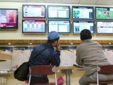 Турецким любителям скакового спорта дали «картинку» с еще одного ипподрома