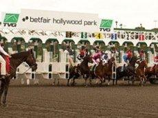 Носящий название Betfair ипподром в Калифорнии закроется