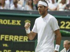 Дель Потро входит в пятёрку главных фаворитов US Open