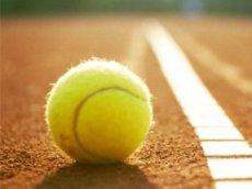 Популярность ставок на теннис растет вместе с развитием лайва и онлайн-букмекеров в целом