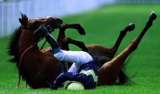 Если бы эту лошадь назвали Рублем, то не ошиблись бы: но ждет ли падение жокеев-букмекеров? Отвечают букмекеры и игроки