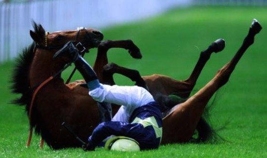 В чем сходство этой лошади и рубля?