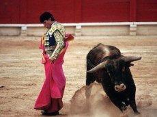 Операторы, имеющие лицензию Испании, также подали дополнительные семь заявок