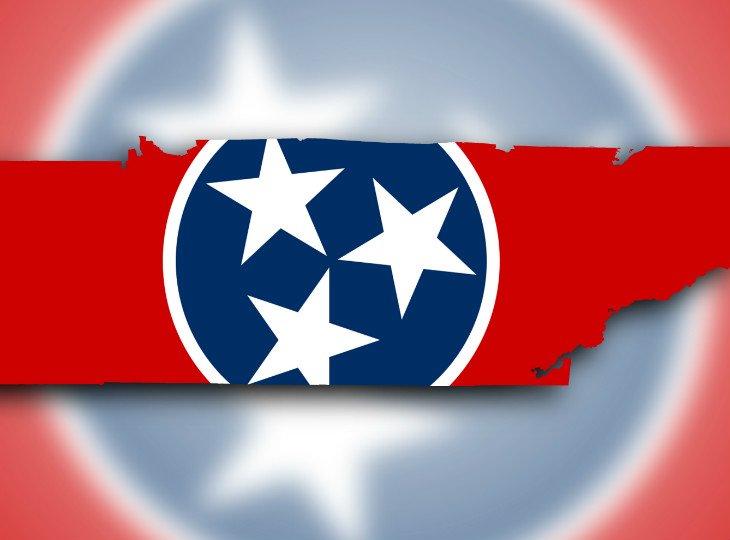 Генпрокурор штата Теннесси считает DFS незаконным
