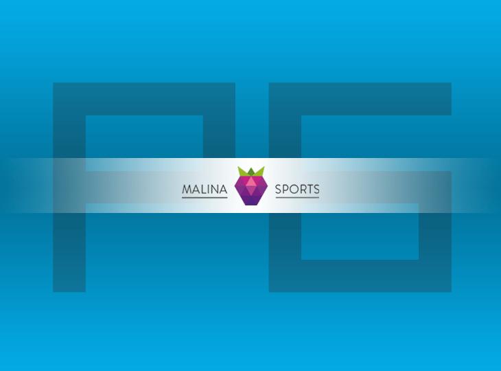 В рейтинг добавлена букмекерская контора Malinasports